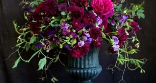 Florali, Jewel toned floral arrangement wiith burgundy, purple and hot pink…
