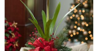 Amaryllis Silk Flower Arrangement - Red