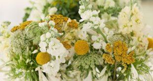 15 Herbst Hochzeit Blumen, die wir lieben