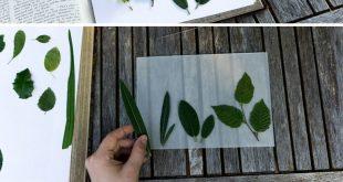 DIY Florale Lichtbox selber bauen: So funktioniert es