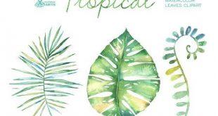 Tropischen Aquarell Blätter. Handgemalte Cliparts, Laub, Gras, Blatt, Hochzeitseinladung, separate Elemente, Gruß, diy, Kräuter, tropische