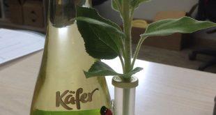 (notitle) - Flaschen verpacken - #Flaschen #notitle #verpacken