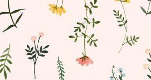 Botanische Clipart Wildflower Hand gezeichnetes Blumenaquarell png blüht das elegante mit Blumenclipartillustrationsbetriebsblumen-Zweighochzeit