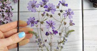 Gerahmte gepresste Blumen blau Dekor. Original Herbarium. trockene Blume Wanddekoration. gepr...