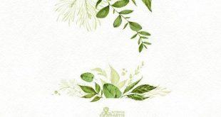 In der Wildnis. Aquarell Blumen Rahmen, Vorkehrungen, Blätter, Hochzeitseinladung, Suite, Grußkarte, Clipart, Blatt, Aufkleber, Kalender, itw