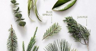 Your Seasonal Greenery Just Got Even More Stylish